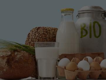 Складова програма за магазин за био продукти